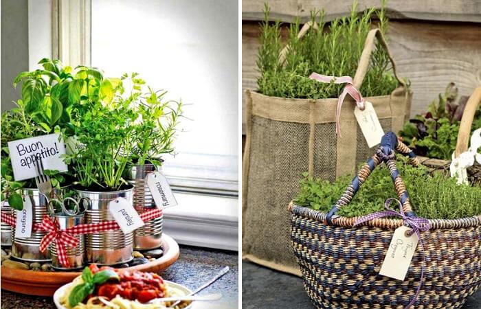 8 ideas para cultivar plantas aromaticas en tu hogar