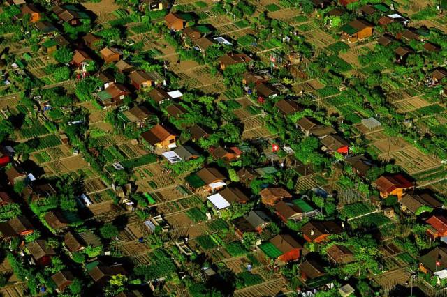 Barrio huertos