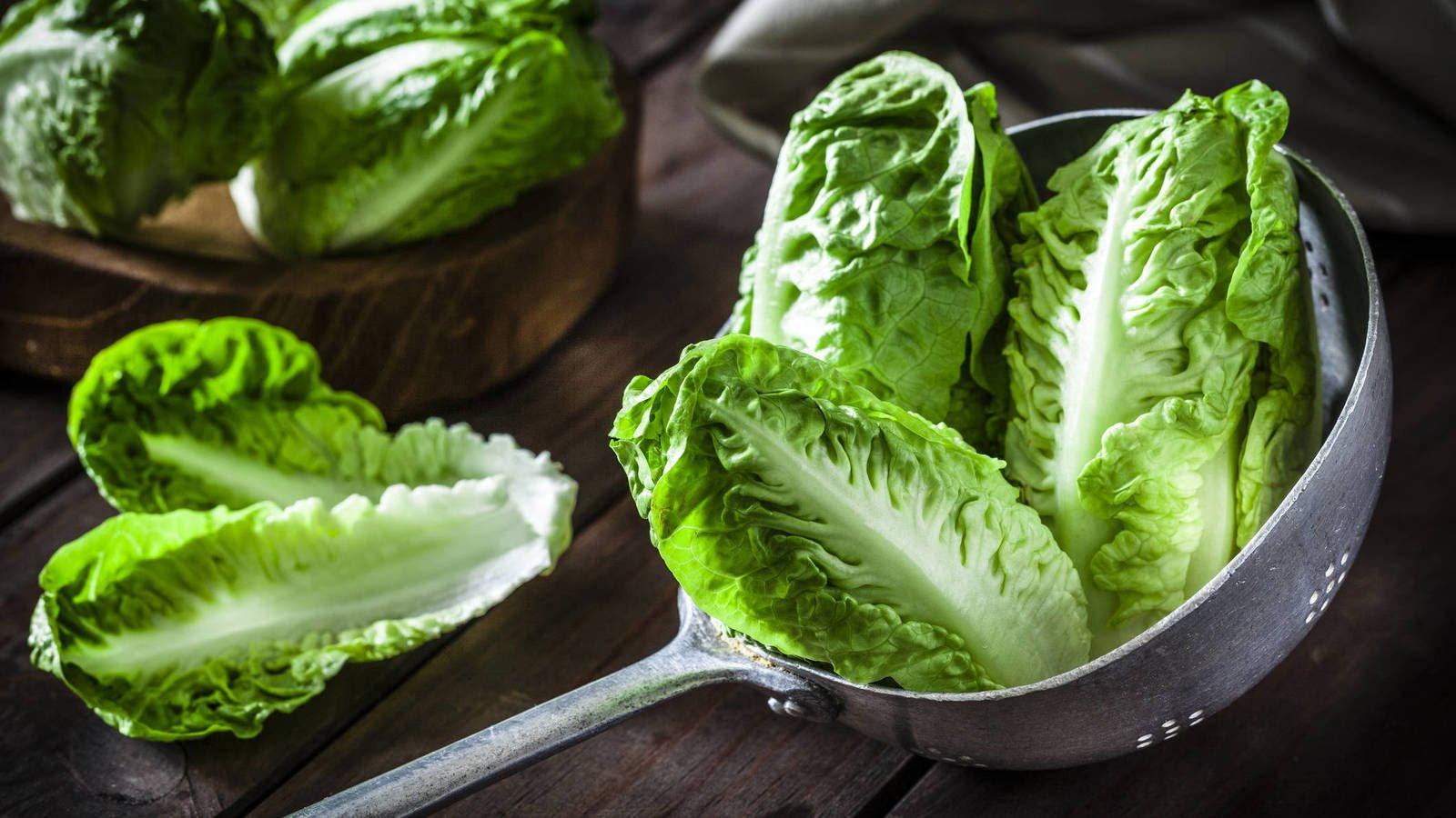 Cuatro formas de consumir la lechuga alternativas a la ensalada