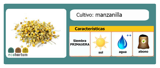 Ficha cultivo manzanilla ecohortum