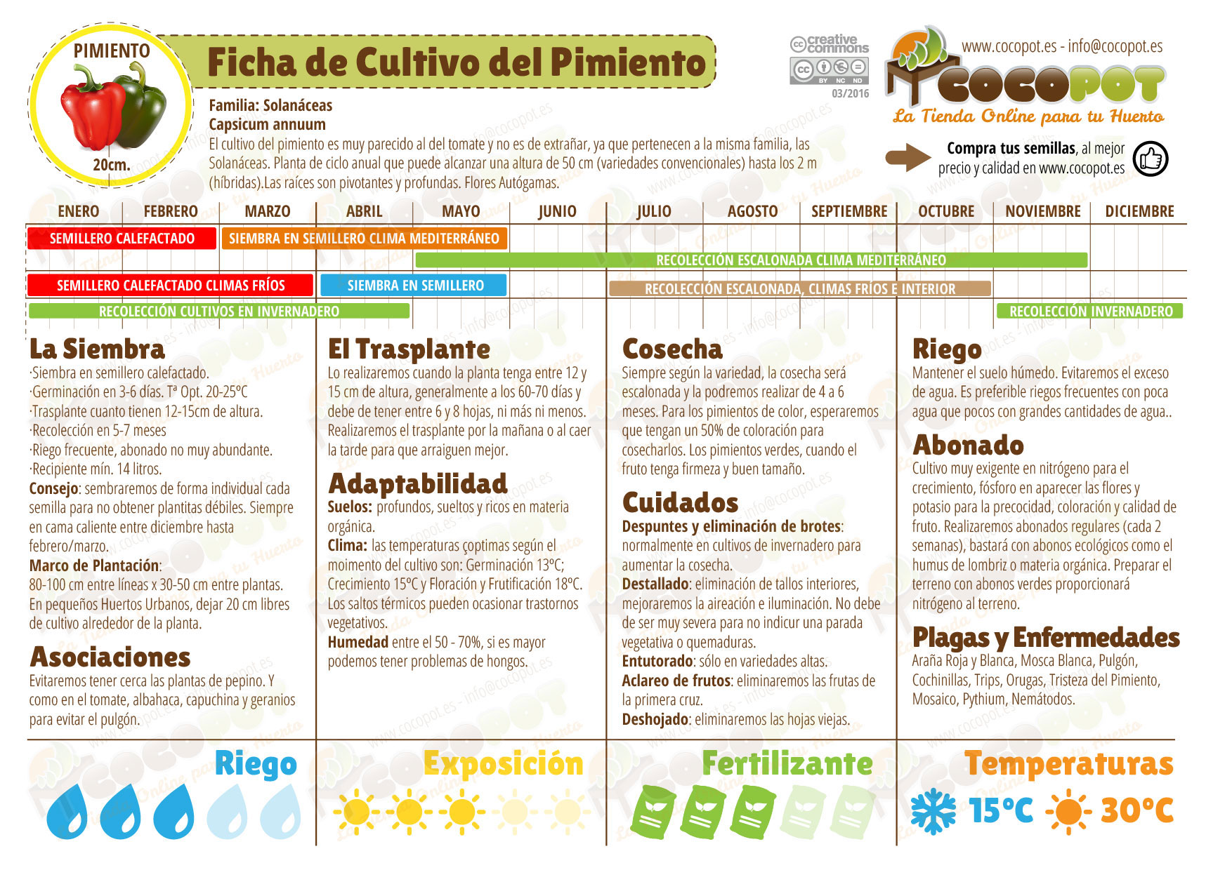 Ficha cultivo pimiento